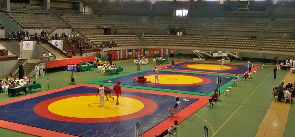 Wrestling Mats Manufacturer Wholesaler Delhi India
