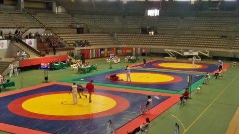 wrestling-mats-2